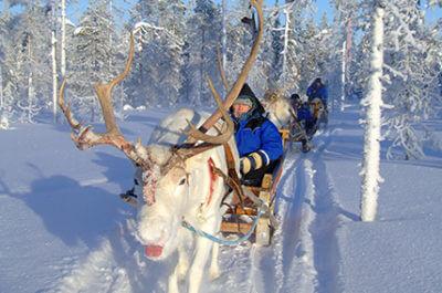 Finnland Nordlichtreise