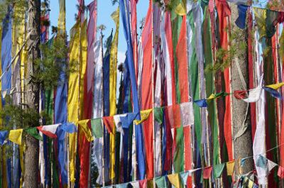 Bhutan Baustein