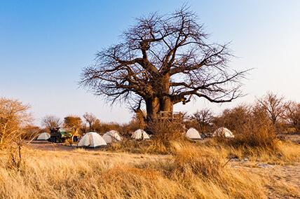 Entdecke Namibia