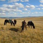 Mongolei Rundreise