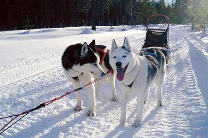 Finnland Erlebnisreise