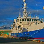 Schiff am Hafen von Höfn, Island
